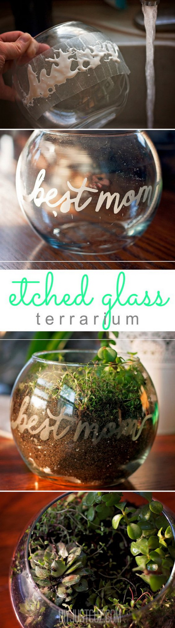 DIY terrarium Planters for Mother's Day. Handmade, diy gifts are alway the best gifts for your mom! Here's an etched glass terrarium made using the Silhouette Cameo for Mother's Day.