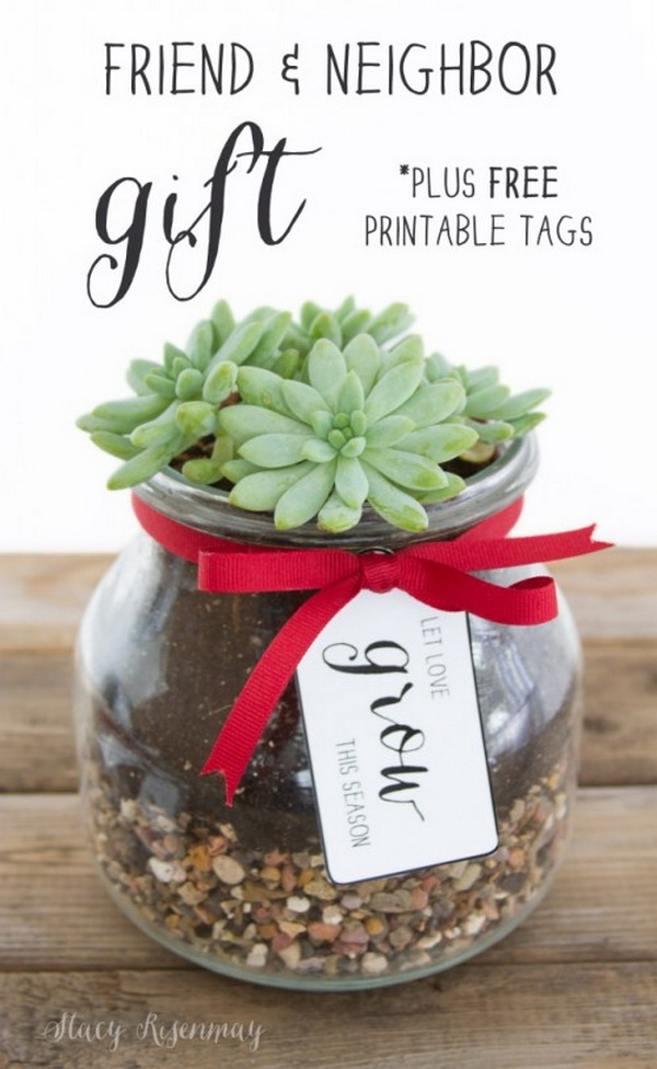 DIY Glass Planter.Quick and Inexpensive Christmas Gift Ideas for Neighbors