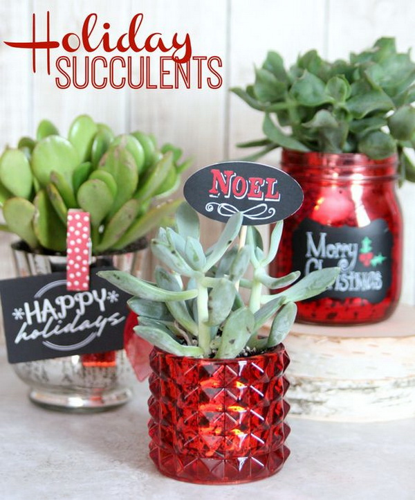 DIY Holiday Succulents。 Quick and Inexpensive Christmas Gift Ideas for Neighbors