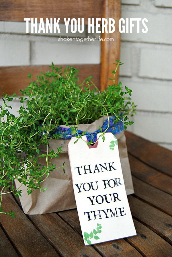 Thank You Herb Gifts. Quick and Inexpensive Christmas Gift Ideas for Neighbors