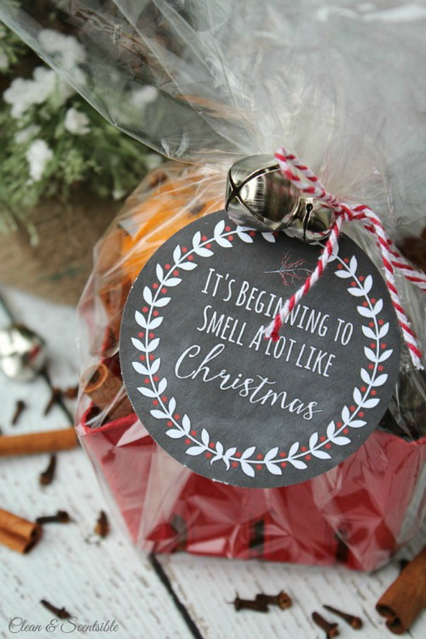 Simmering Potpourri With Printable Tag. Quick and Inexpensive Christmas Gift Ideas for Neighbors