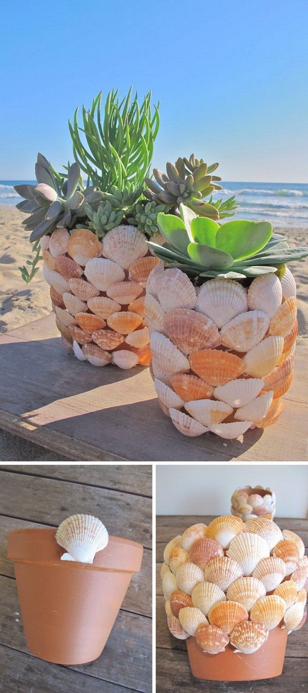 DIY Seashell Planter. Make a seashell planter in a few easy steps and get a coastal or nautical look for your home.