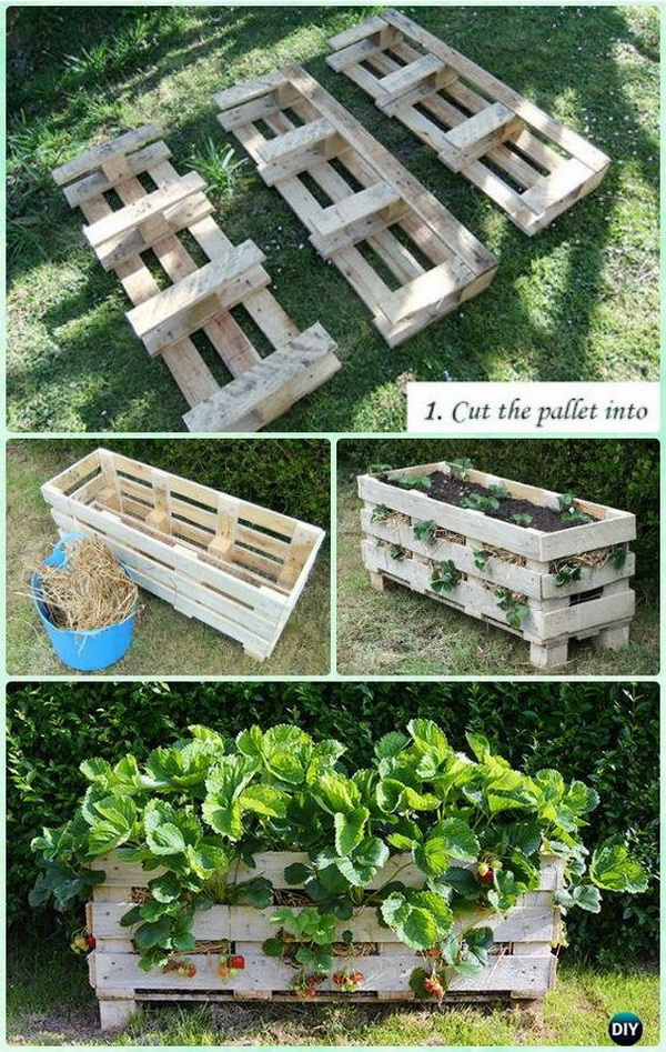 DIY Vertical Strawberry Pallet Planter. This cool vertical pallet strawberry planter are great for growing strawberries. It can stand alone and allows growing strawberries hanging outside in small spaces.