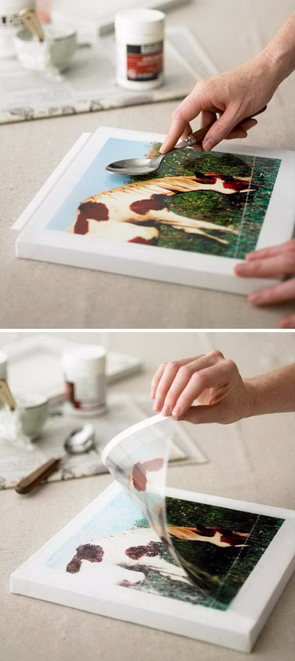 Nature-Inspired Picture Transfer.