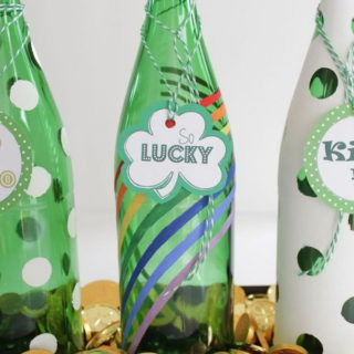 20+ Easy and Quick St. Patrick's Day Crafts for Kids